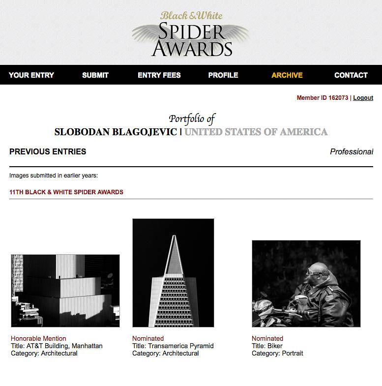11th Spider Awards